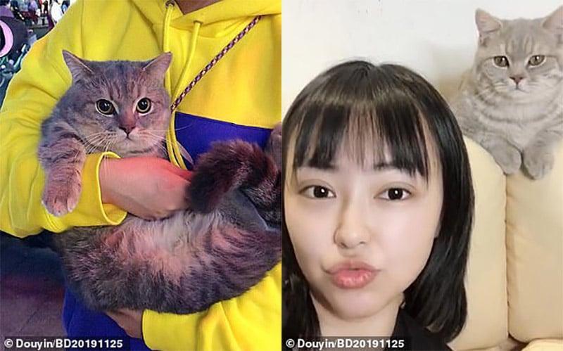 Ba Dun Wen